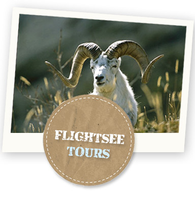 alaska flightsee tours